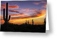 Light Up The Sky Southwest Style  Greeting Card