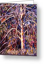 Lightening Struck Tree Greeting Card