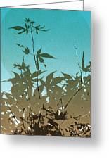 Torquoise Haiku Greeting Card