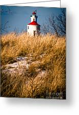 Lighthouse Amongst The Tall Grass Greeting Card