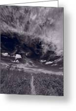 Lighthouse Beach Dunes Bw Greeting Card by Steve Gadomski