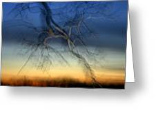 Lightning Branches Greeting Card