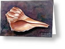 Lightning Whelk Greeting Card