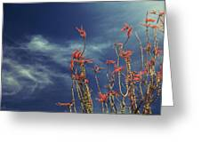 Like Flying Amongst The Clouds Greeting Card