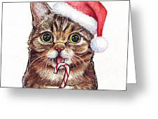 Cat Santa Christmas Animal Greeting Card