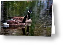 Lila Goose And The King Greeting Card