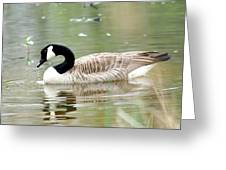 Lila Goose Queen Of The Pond 2 Greeting Card