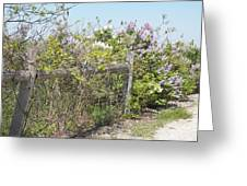 Lilac Fence II Greeting Card