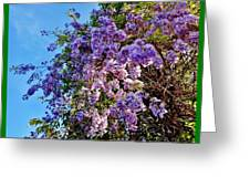 Lilac Tree Greeting Card