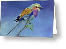 Lilacbreasted Roller Greeting Card