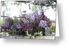 Lilacs Hanging Basket Window Reflection - Dreamy Lilacs Floral Art Greeting Card