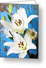 Lilies Against Blue Wall Greeting Card