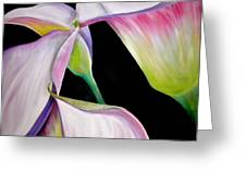 Lilies Greeting Card by Debi Starr