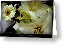 Lilium Casa Blanca Greeting Card