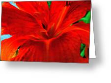 Lily Greeting Card by Mark Malitz