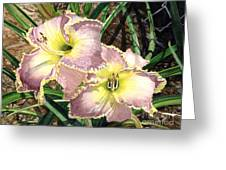Lillies Clothed In Glory Greeting Card