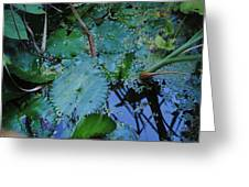 Lillies Of The Garden Greeting Card
