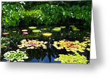 Lilly Garden Greeting Card