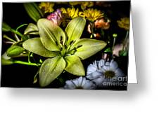 Lily Greeting Card by Adrian Evans