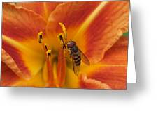 Lily And Bee Greeting Card