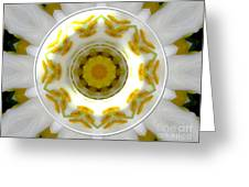 Lily And Daffodil Kaleidoscope Under Glass Greeting Card