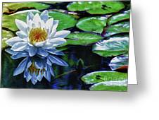 Lily And Dragon Flies Greeting Card