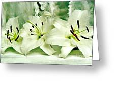 Lily Family Greeting Card