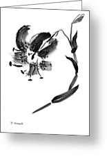 Lily In Black Greeting Card