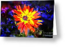 Lily In Vivd Colors Greeting Card by Gunter Nezhoda