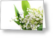 Lily Of The Valley Art Greeting Card