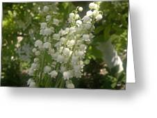 White Lily Of The Valley Bouquet Greeting Card