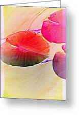 Lily Pad 2 Greeting Card