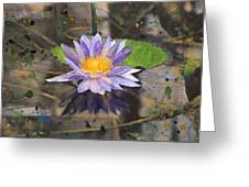 Lily Pad With Purple Flower Greeting Card