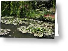 Lily Pads Monets Garden Greeting Card