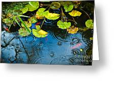 Lily Pads Ripples And Gold Fish Greeting Card