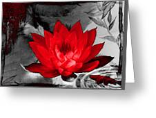 Lily Red And Koi Greeting Card