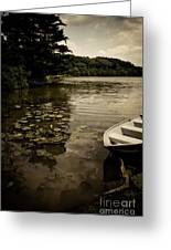 Lilypads In The Lake Greeting Card by Amy Cicconi