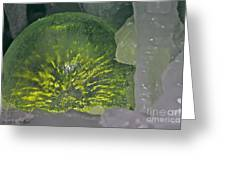 Limon Arcs Greeting Card