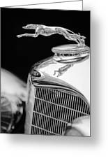 Lincoln Hood Ornament - Grille Emblem -1187bw Greeting Card