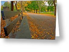 Lincoln Park Bench In Fall Greeting Card