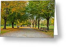 Lincoln Park In Fall Greeting Card