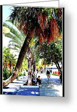 Lincoln Road In Miami Beach Greeting Card