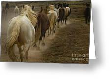 Line Of Mares Greeting Card