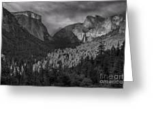 Lingering Shadows In Grey Greeting Card