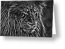 Lion - 2 Greeting Card