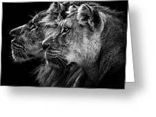 Lion And  Lioness Portrait Greeting Card