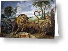 Lion And Three Wolves Greeting Card