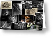 Lion Collage Greeting Card