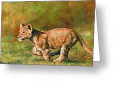 Lion Cub Running Greeting Card