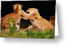 Lion Cubs Playing In The Grass Greeting Card